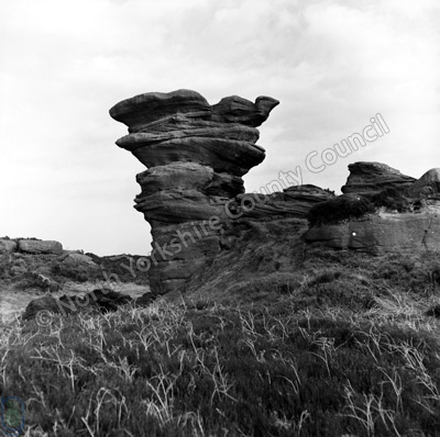 Brimham Rocks, Chick